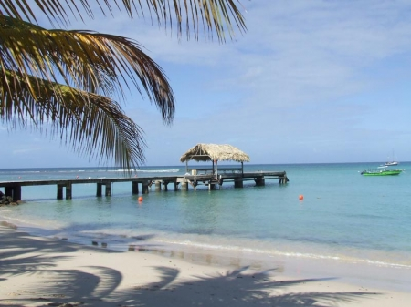 Tobago: La plage de Pigeon Point